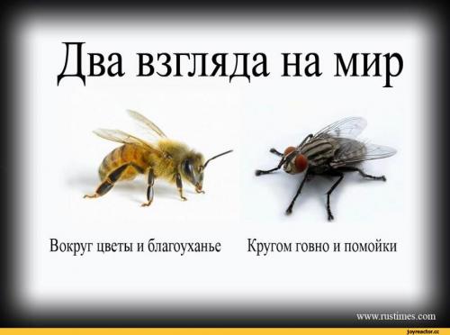 image.thumb.png.ece987d459508eb5272370c2c575ff88.png