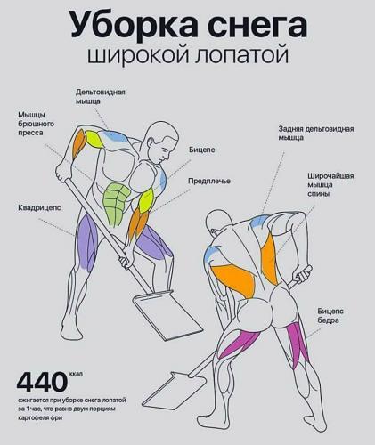 5a44b03b533d9.jpg